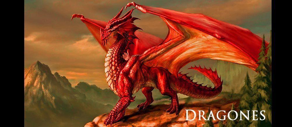 Regalos de dragones